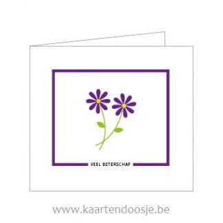 Wenskaarten afscheid veel beterschap bloem